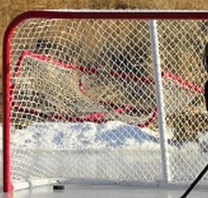 matchresultat hockey