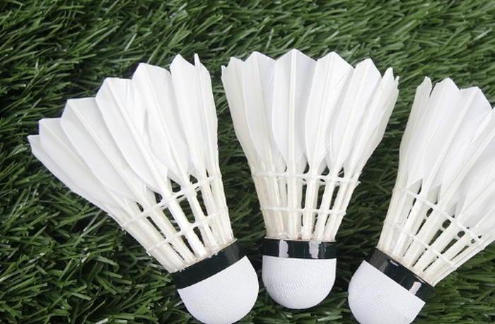 Badminton Odds Spela