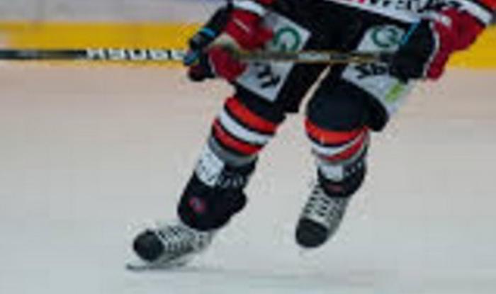 Bild Spelförslag Hockeyspelare Schweiz