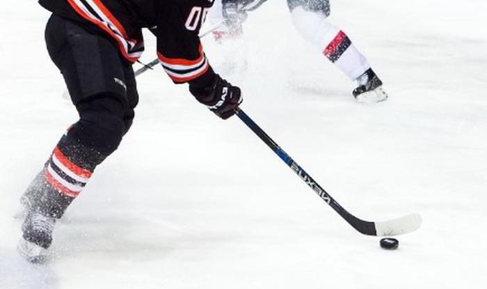 Speltips Bild på Hockey Spel Slovan